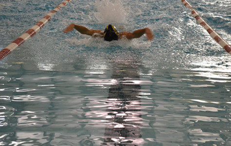BHS Swim Team Competes in District Tournament, Shows Improvement
