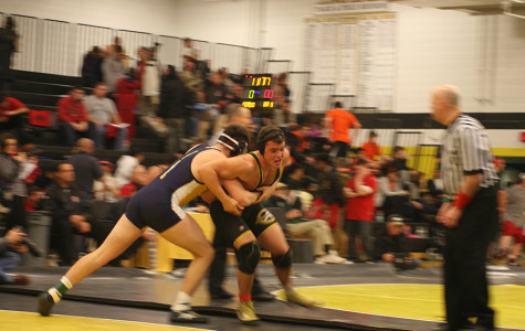 Three Bison Wrestlers Place at CVC Championship