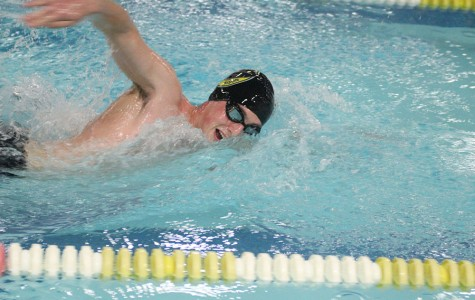 Six Swimmers Headed to States