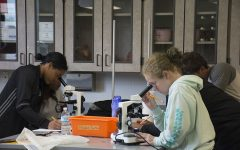 Science Department Offers New Anatomy and Physiology Course