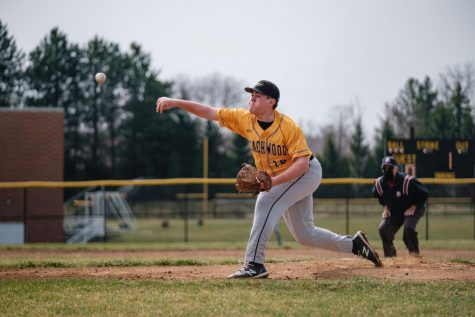 Senior Jordan Levin has been dominant on the mound this season.